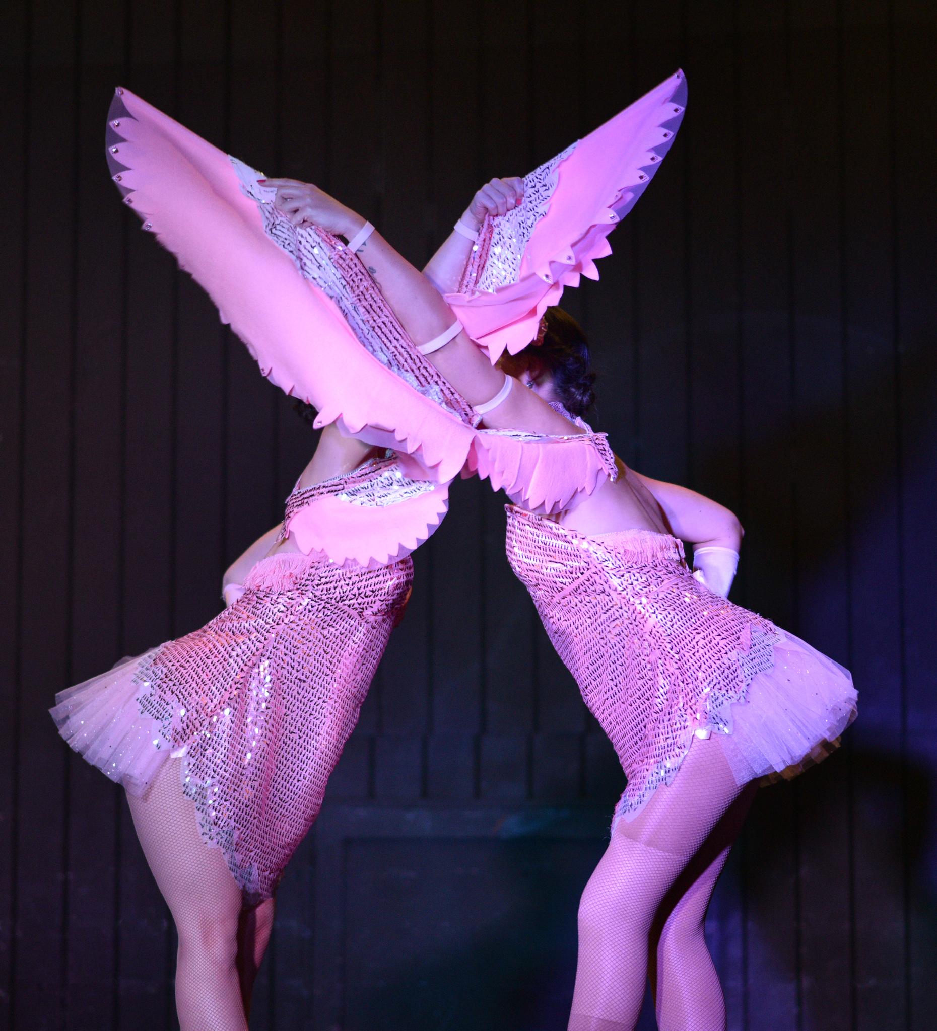 peter jennings The Razzle Dazzlers flamingo follies
