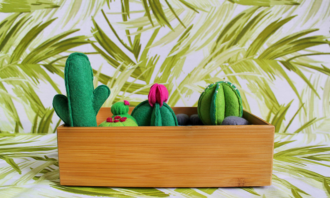felt cactus zen garden | Velvet DeCollete